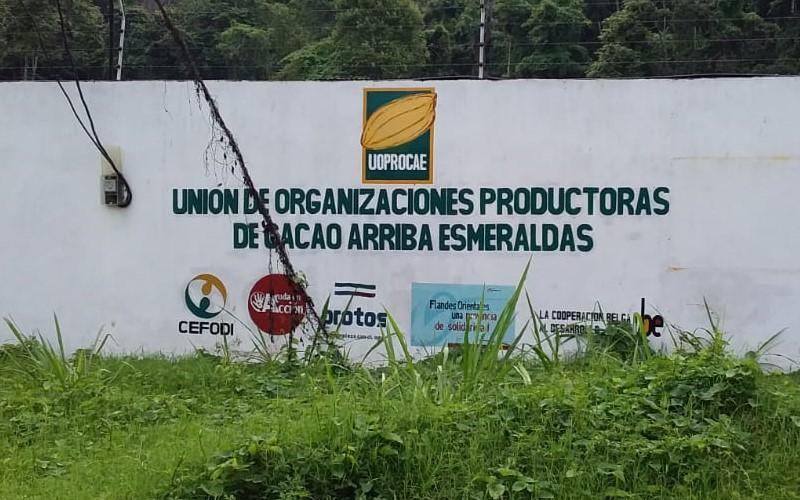 Unión de Organizaciones Productoras de Cacao Arriba de Esmeraldas
